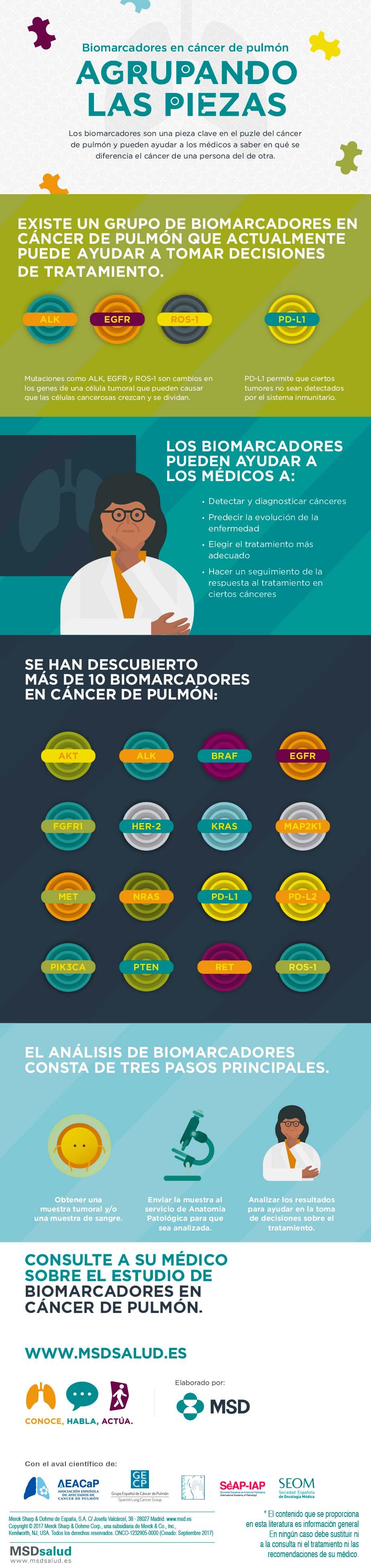 infografia-conoce-habla-actua
