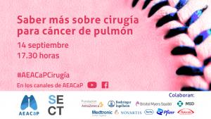 AEACaP Seminario Cirugia en cáncer de pulmón